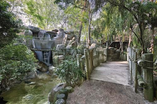 Rainforest Exhibit